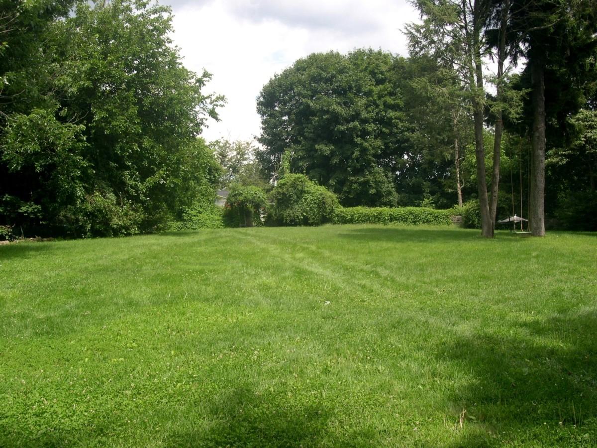 great-lawn